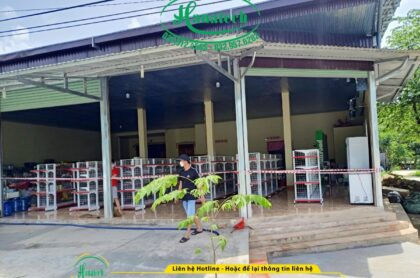 Lắp đặt kệ siêu thị cho cửa hàng tạp hóa tại Đam Rông Lâm Đồng